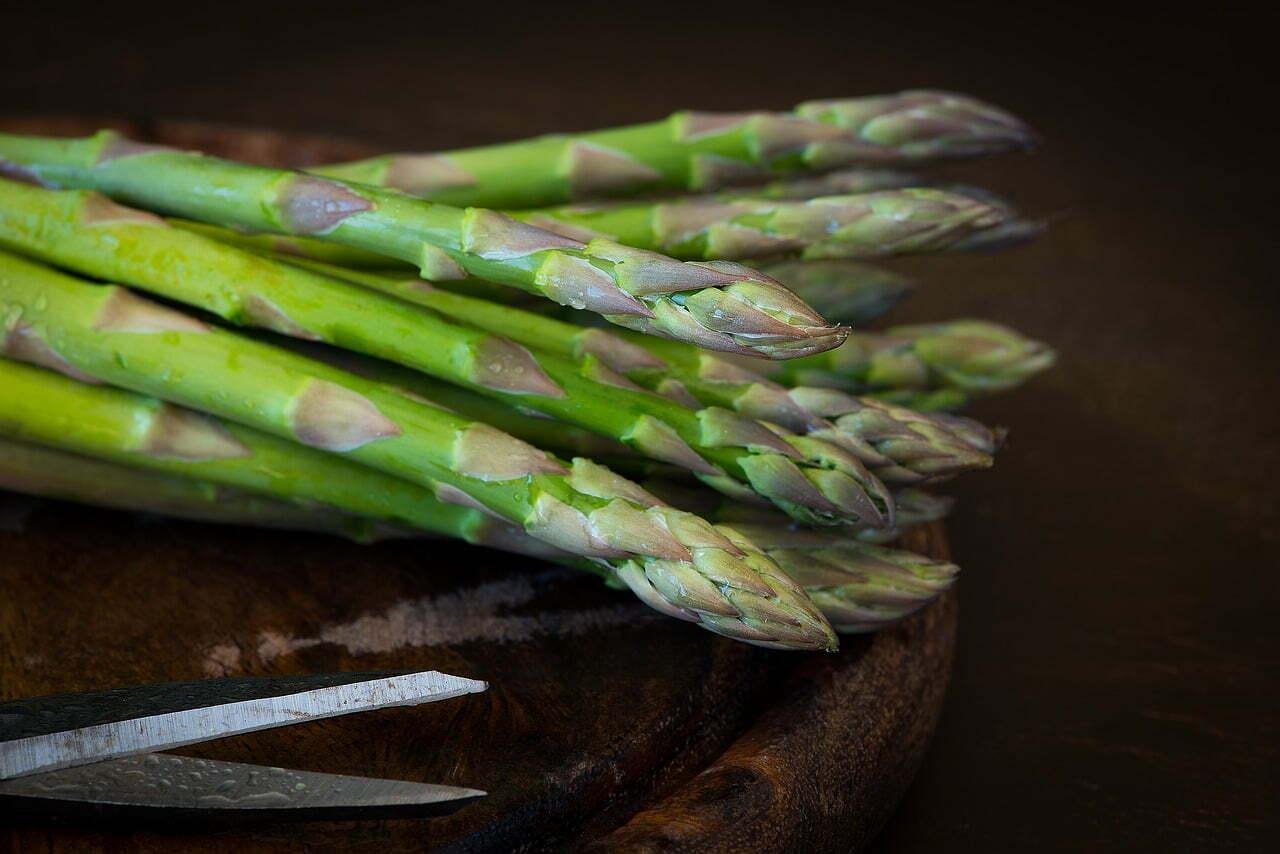 Come coltivare asparagi in casa [GUIDA COMPLETA]