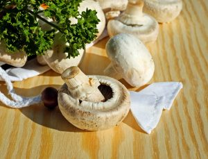 mushrooms, white mushroom, edible