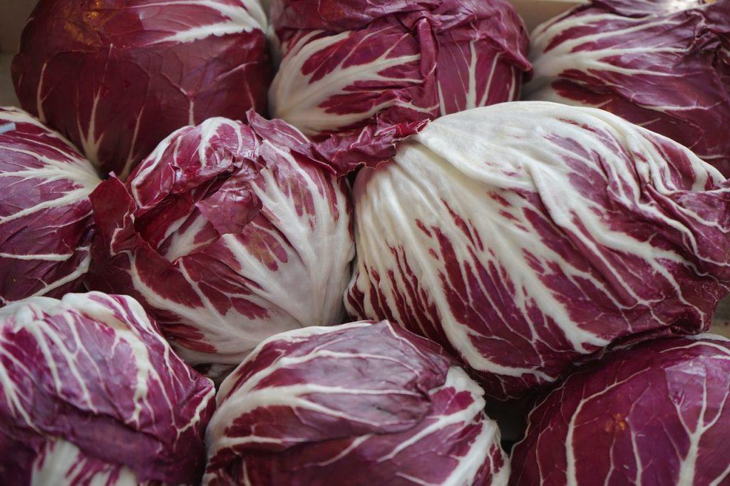 radicchio, salad, red
