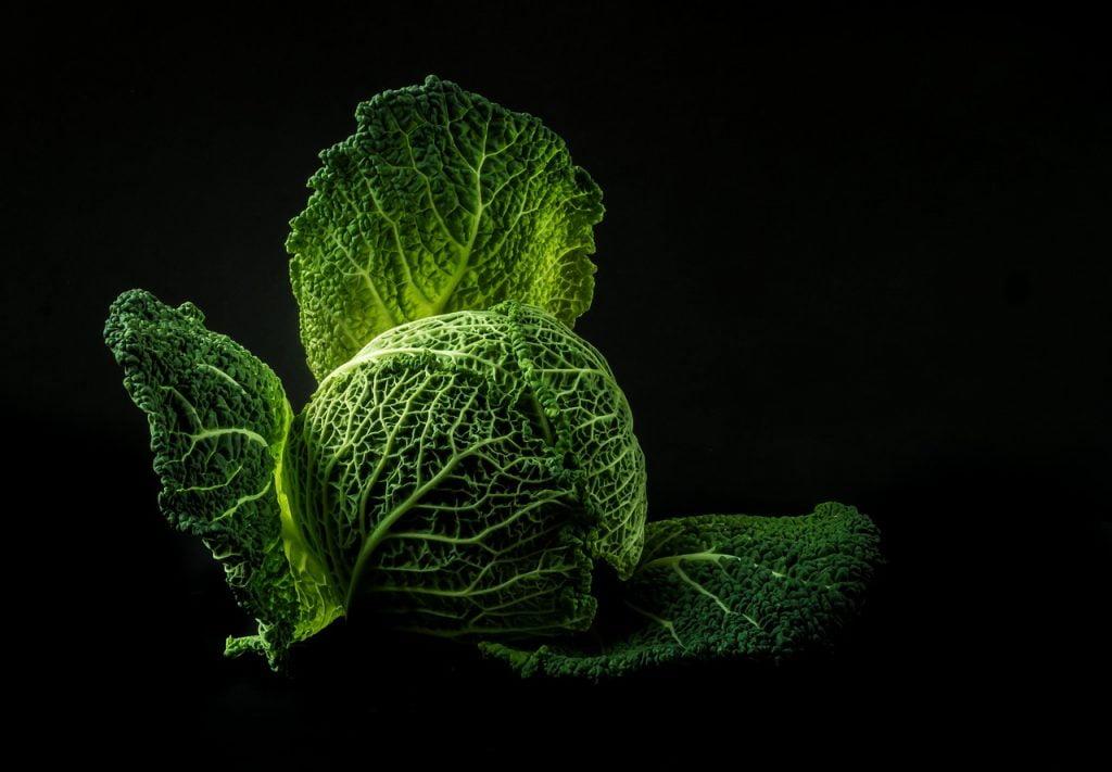 vegetables, cabbage, green